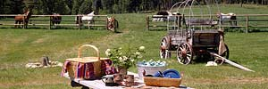 picnic on a Montana ranch with horses and old antique wagon